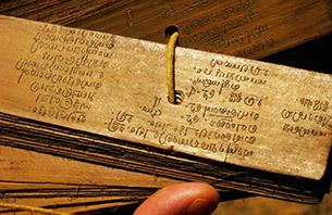 Palmblatt in der Palmblattbibliothek